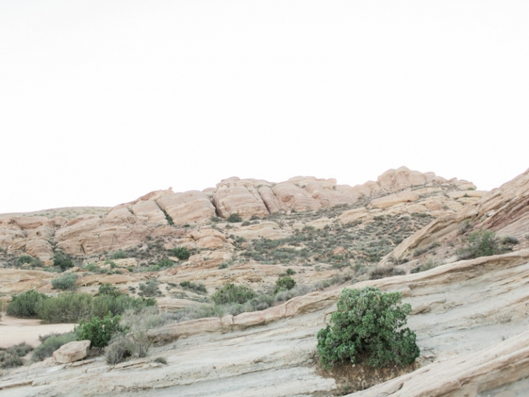 d-Vasquez-Rocks-engagement-session_09
